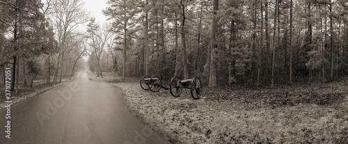 Foto Cannon at Chickamauga