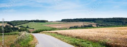 Fotografia cornfields and meadows under blue sky in french pas de calais near boulogne