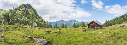 Leinwand Poster Idyllic mountain landscape in the alps: Mountain chalet, cows, meadows and blue