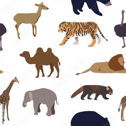 Seamless pattern with wild animals Fototapeta