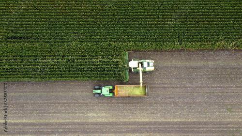 Canvas-taulu Harvesting a maize field