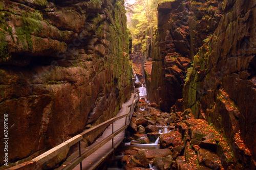 Fotografija The Flume Gorge, Franconia State Park, New Hampshire