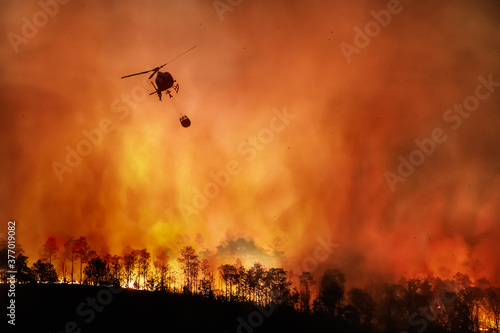 Canvas Print Fire fighting helicopter carry water bucket to extinguish the forest fire