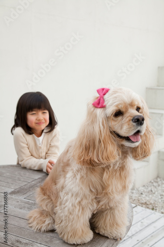 Photo 女の子とアメリカン・コッカー・スパニエル