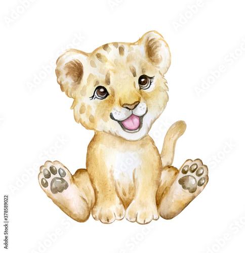 Cute lion cub isolated on white background Fototapeta