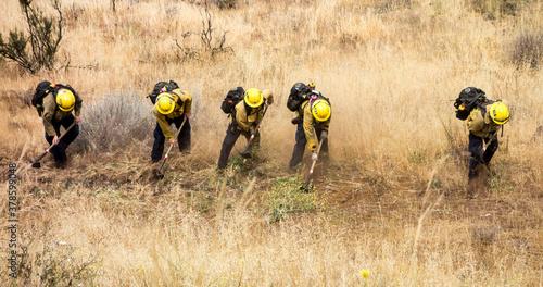 Canvas-taulu Firemen firefighters in dry grass fighting the last of a fire preparing a firebreak