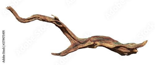 Slika na platnu driftwood isolated on white background, aged wood