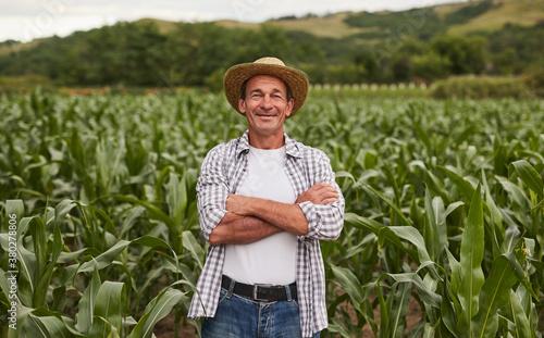 Fototapeta Confident mature farmer in agricultural field