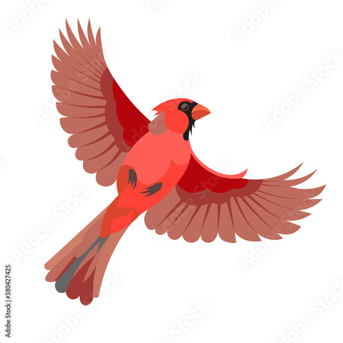 Fotografia Figure of a flying red cardinal bird