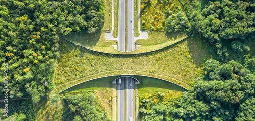 Carta da parati Aerial top down view of ecoduct or wildlife crossing - vegetation covered bridge