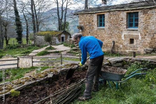 Obraz na plátne building a raised bed for planting food