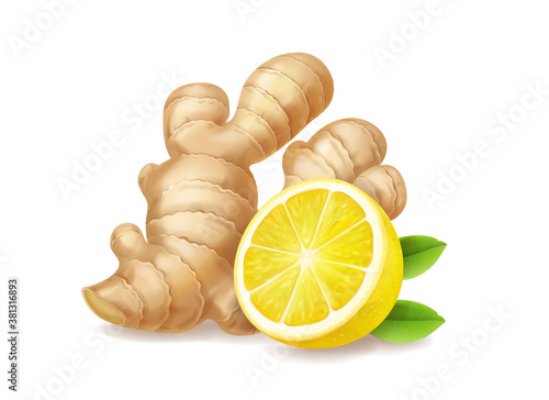 Fototapeta Lemon and ginger root isolated realistic illustration