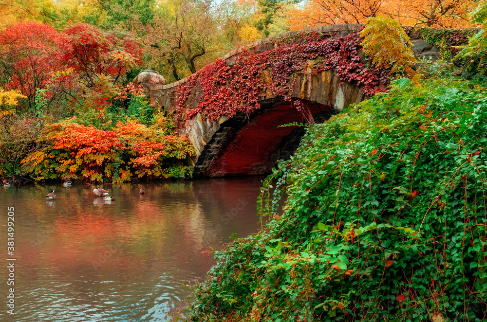 view of autumn landscape in Central Park. New York City. USA