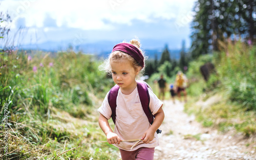 Fotografiet Portrait of small toddler girl outdoors in summer nature, walking