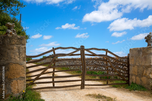Menorca traditional olive tree wooden fence in Balearic