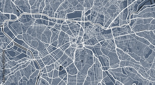 Fotografie, Obraz Detailed map of Sao Paulo city, linear print map