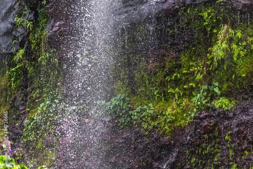 Wallpaper Mural waterfall in the park, Anse des Cascades, île de la Réunion