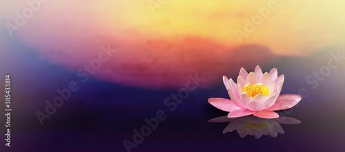 Fotografia Pink lotus flower with sunrise background.