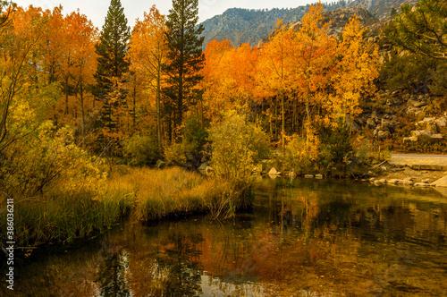 Canvas Print Hidden lake on Inyo county, Ca