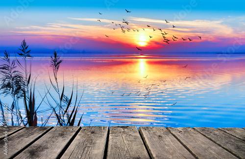 bonita pues de sol con colores saturados