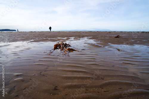 Fotografering Ayr Beach is located on the western coastline of Ayrshire in the south west of Scotland