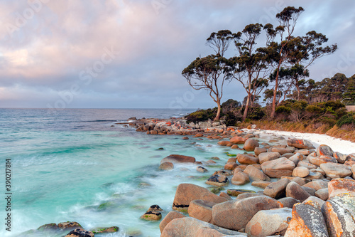 Canvas Print Bay Of Fires Tasmania