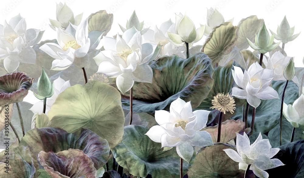 The scenic Lotus flowers.