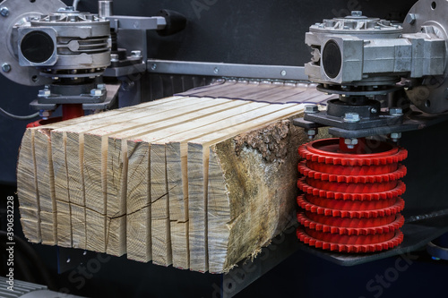 Canvas Print birch logs are cut with blades at a sawmill