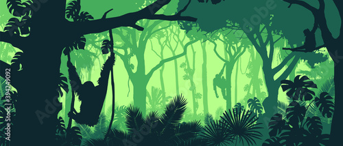 Fotografie, Obraz Beautiful vector landscape of a rainforest jungle with orangutan monkeys and lush foliage in green colors