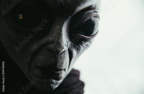 Photo Alien creature has a message for humans