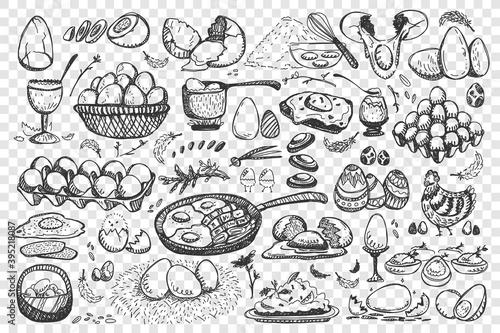 Obraz na płótnie Chicken eggs doodle set