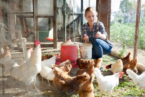 Stampa su Tela Young woman farmer caring for poultry. High quality photo