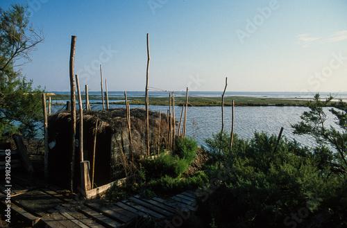 cabane de chasseurs, Bassin d'Arcachon, Landes de Gascogne, 33, Gironde Fotobehang