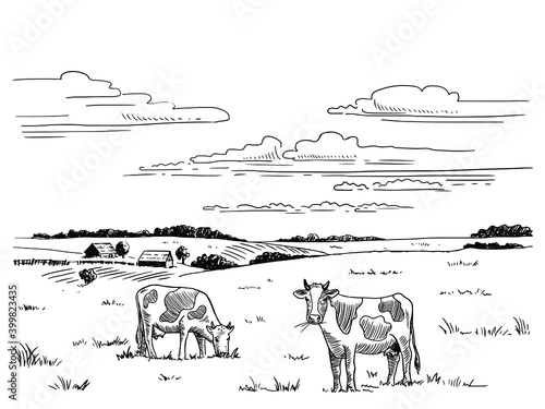 Foto Hand drawn sketch of the countryside with cows grazing in the meadow