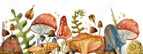 Fotografia Border toadstool mushroom with red fly-agaric mushrooms