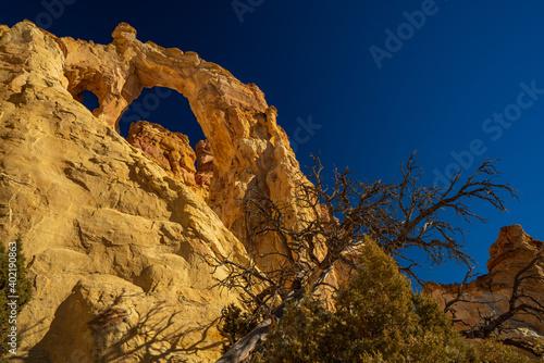 Grosvenor Arch in the Grand Staircase-Esclante National Monument Fototapet