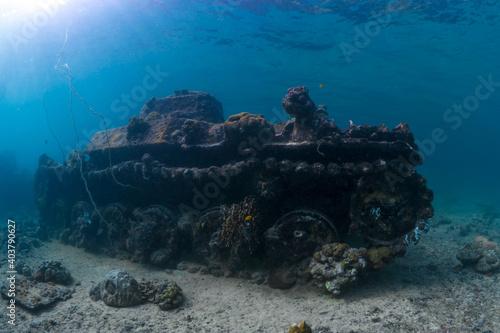 Cuadros en Lienzo World war 2 wreck underwater in Papua New Guinea