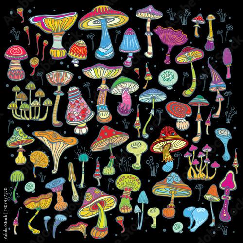 Valokuvatapetti Background with bright, decorative mushrooms