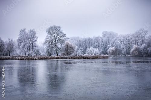 Obraz na plátně Frozen lake in snowy forest landscape