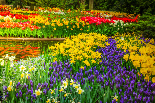 Obraz na plátně fresh lawn with flowers