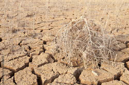 Fotografija Dry and cracked land, dry due to lack of rain, in the Loteta reservoir, near the town of Gallur, Spain