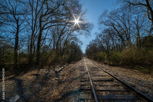 Vászonkép railroad tracks in the forest - at Chickamauga Battlefield