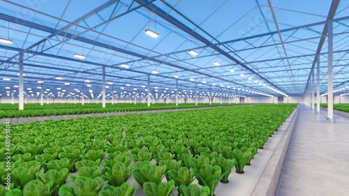 Canvastavla Big industrial greenhouse interior