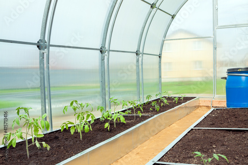 Valokuvatapetti small plastic  greenhouse in backyard in garden