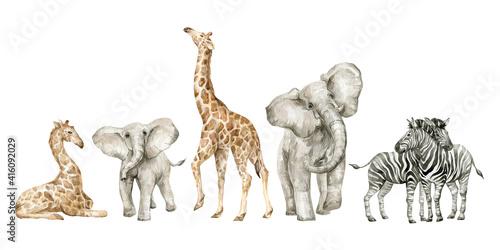 Wallpaper Mural Watercolor set with wild savannah animals