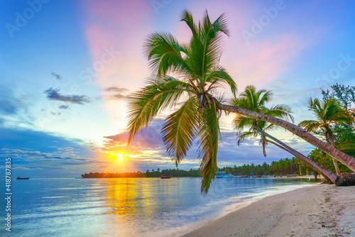 Fotografie, Obraz Beautiful sunrise over tropical beach and palm trees in Dominican republic