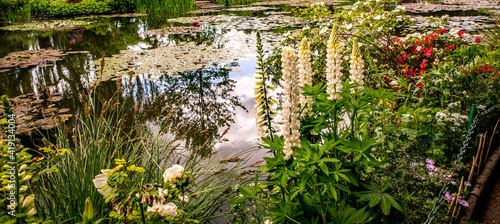 Fotografie, Obraz Pond, trees, and waterlilies in a french garden