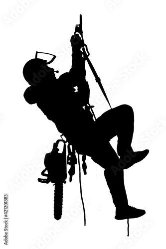 Fotomural Tree Surgeon
