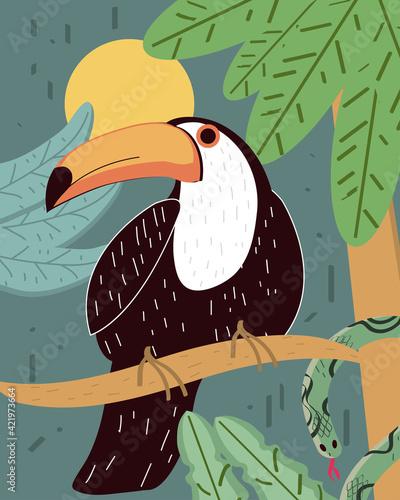 Fototapeta premium toucan tree branch