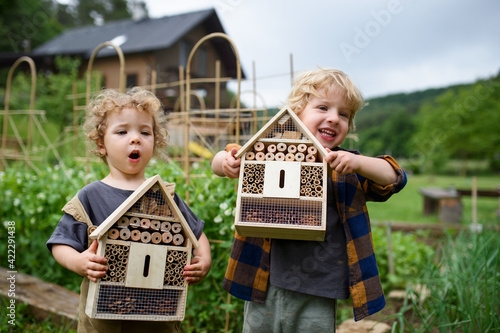 Foto Small boy and girl holding bug and insect hotel in garden, sustainable lifestyle
